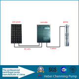 CC Solar Submersible Water Pump e Solar Surface Pumps