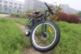 A melhor compra elétrica de venda da bicicleta 250W em linha com o Ce aprovado