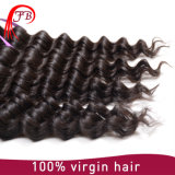 Cabelo Mongolian cru natural de trama mais grosso e forte de Remy do Virgin