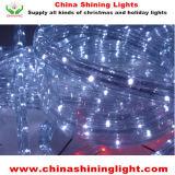 クリスマスの休日の装飾LEDライト