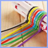 Bunter Nylonkabelbinder kundenspezifisches Reißverschluss-Gleichheit-Draht-Klipp-Halterung-Kabelbinder-Nylon