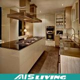 Het naar maat gemaakte Meubilair van de Keukenkasten van de Luxe (ais-K149)