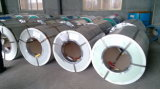 Colore Coated Steel Coils con Film Covered