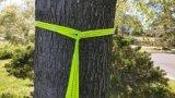 Porte les courroies colorées d'arbre d'hamac pour les hamacs de hausse campants