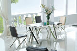 De moderne Eettafel van het Glas van het Roestvrij staal van de Stijl voor Meubilair Hom