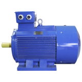 Ie3 Asynchrone Elektrische Motor de In drie stadia van het Aluminium