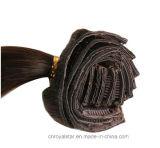Clip recto de Brown del pelo brasileño encantador de Remy en la extensión del pelo