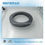 De aangepaste Grote Magneet van het Ferriet van de Boog voor Motor, Rem