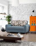 Simples estilo funcional sofá-cama para sala de estar (VV902)