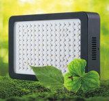 La planta de crecimineto rápido LED de la horticultura LED crece la luz