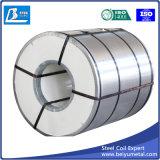 Larghezza d'acciaio galvanizzata tuffata calda 600mm della bobina