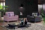 Sofà del fabbricato della mobilia del salone singolo Cum la base