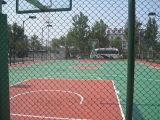 Terrain de basket coloré de prix concurrentiel d'utilisation de Multisport