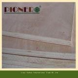 Tarjeta comercial de la madera contrachapada de Bintangor con la base de Combi para el mercado de Medio Oriente