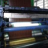 Gewölbtes Steel Coil für Roofing/PPGI Steel Coil