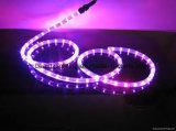 éclairage LED de lumière de bande de la bande 110/230V DEL de 3528SMD ETL DEL
