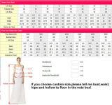 Punkt-Tulle-Brautkleid-langes Hülsen-Spitze-Hüllen-Hochzeits-Kleid D1950