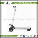 Un motorino piegante 350W elettrico delle 2 rotelle con Non-Pneumatictyre