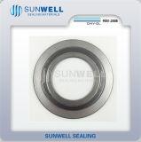 内部および外のリング(SUNWELL)が付いている316の(l)グラファイトCgiの螺線形の傷のガスケット