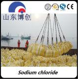 Chlorure de sodium industriel de pente de la pureté 99% d'approvisionnement