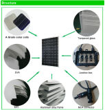 中国の製造業者からの工場価格のパネル太陽モノクリスタル270W