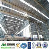 Fornitore professionista di costruzione della struttura d'acciaio