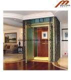 별장 엘리베이터를 위한 가정 상승