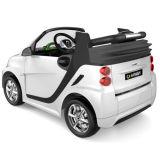 2016 de Nieuwe Slimme Rit van het Jonge geitje op Auto Vergunning gegeven 12volt