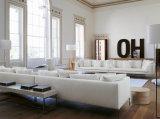 高い鉄の足白いファブリック部門別のソファーはホーム(FS-015)のためにセットした