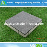Baldosas cerámicas del pavimento del negro permeable al agua de la buena calidad