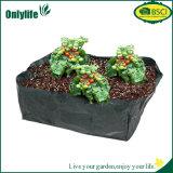 Piantatrice riutilizzabile del giardino del tessuto del PE di Onlylife E Cofriendly