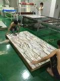 Pulidor de suelo satinado ULTRAVIOLETA de madera dura de las placas decorativas TM-ULTRAVIOLETA-DP que cura la máquina