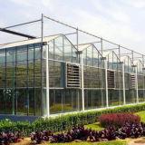 Nuova grande serra europea di vetro di alta tecnologia di stile