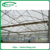 Tropical Area를 위한 높은 지붕 광고 방송 필름 온실