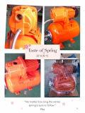 (SDP600-11) Cast Iron Head Garten Surface Pump für Home Irrigation