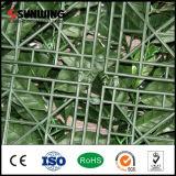 Decoración del jardín fresco de la naturaleza PE verde artificial del boj Cercos