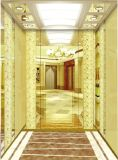 M. repéré par miroir et LMR Aksen Ty-K206 de levage d'ascenseur de passager