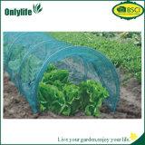 Le PE réutilisable d'usine de jardin d'Onlylife élèvent le tunnel