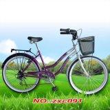 Велосипед Bike/электрической оптовой продажи изготовления велосипеда Bike электрический складывая складывая
