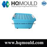 Modelagem por injeção plástica de caixa de armazenamento da boa qualidade