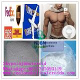 Testoterone Bodybuilding Enanthate di Enanject CAS 315-37-7 degli steroidi di sviluppo del muscolo