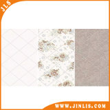 250*500mm Glazed Ceramic Wall Tile 3D Inkjet Tile