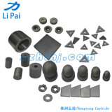 Tungsten Carbide for Non-Standard Die with Customized Shape and Sizes