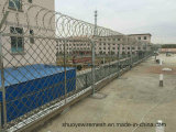 Spinato-collegare di Anping Factory Hot Sale Razor per Fencing
