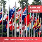 Kundenspezifische Größen-Qualitäts-Staatsflagge