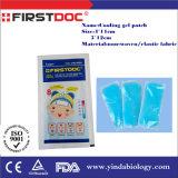 Febbre degli adulti e del bambino del fornitore che si riduce raffreddando la zona del gel