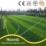 55mmのフットボールの草
