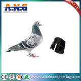 Tag do anel do pé do pombo de RFID para o traçado das aves domésticas
