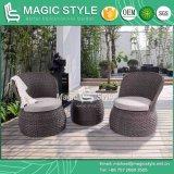 白鳥のコーヒーセットの藤のソファーP.Eの柳細工のソファーの藤のコーヒーソファーのコーヒーテーブル(魔法様式)