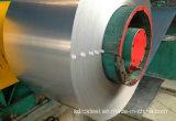 SPCC laminou a tira de aço galvanizada nas bobinas